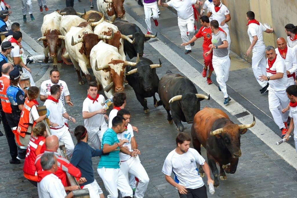 bitcoin bull run coming